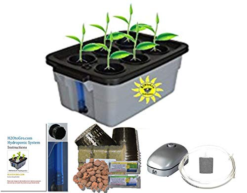 Latest Hydroponic system Complete DWC BUBBLER Kit, 3-6 by H2OtoGro Hydroponic System 9
