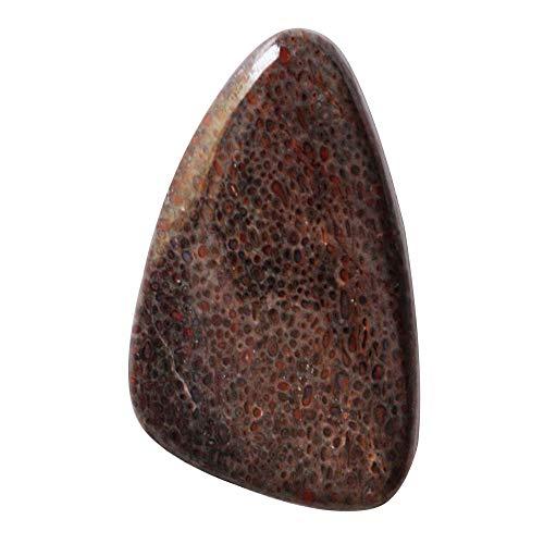 RAVISHINGGEMS Wholesale Price Natural Fossilized Dinosaur Bone Cabochon, Size 20x13x3.5 MM, Pendant Stone, Crafts, New Jewellery Making,19764
