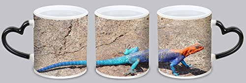 Lidoy Black Friday Promotions Personalized Custom Mug, Ceramic Coffee Mug Cups - Custom The common agama, red-headed rock agama, or rainbow agama Picture -