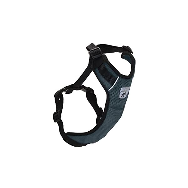 RC Pet Products. Canine Friendly Vented Vest Harness, Small, Charcoal 1