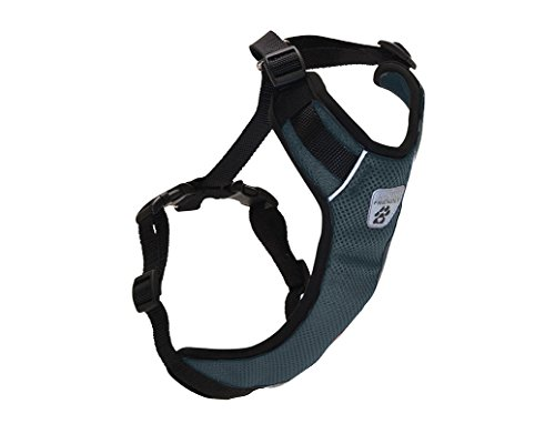Canine Friendly Vented Vest Harness, Large, Charcoal