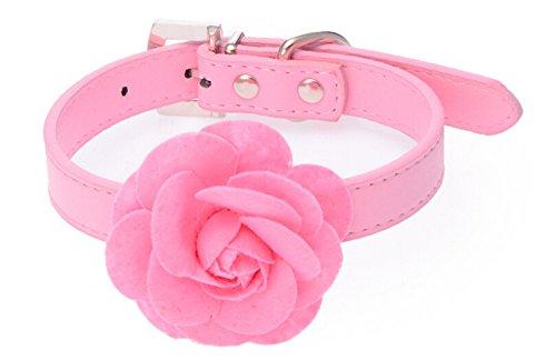Dogs Kingdom cute rose flower dog pet collar and leash 2pcs set