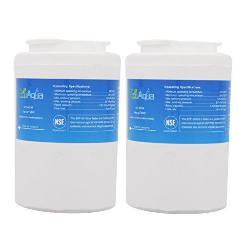 EcoAqua-EFF-6013A Refrigerator Water Filter Cartridge, 2-Pack