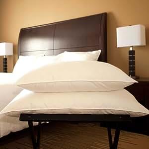 Amazon Com Luxury White Goose Down Chamber Pillow