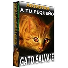 Adiestra a tu pequeño gato salvaje (Spanish Edition) - Kindle edition by Jennifer Sanchez. Crafts, Hobbies & Home Kindle eBooks @ Amazon.com.