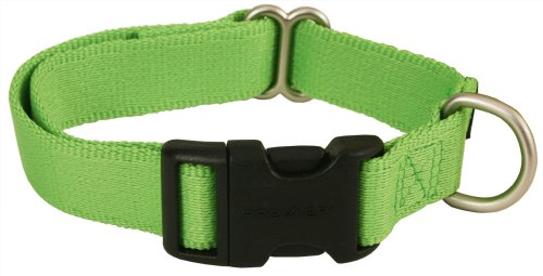 Premier ECO Quick Snap Dog Collar, Medium 3/4 Inch, Fern Green