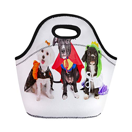 Semtomn Neoprene Lunch Tote Bag Three Cute Little Puppy Dogs Dressed Up in Halloween Reusable Cooler Bags Insulated Thermal Picnic Handbag for -