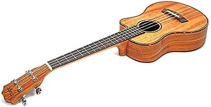 BASDW Guitarra acústica de viaje de ukelele de 23 pulgadas ...
