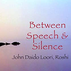Between Speech and Silence