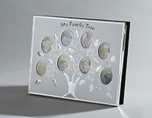 My Family Tree Album