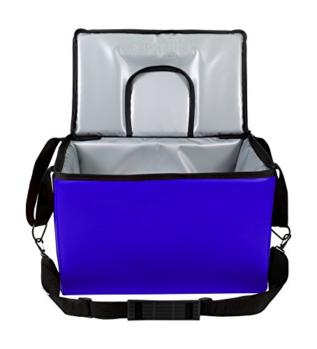 TCB Insulated Bags HWK-2D-Blue Food and Beverage Carriers: Hawking Vending Bag with Dispensing Lid, 13'' x 22'' x 14'', Blue by TCB Insulated Bags