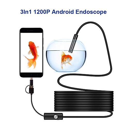 Amazon.com: ip68 1200p Android 8mm Micro USB Type-c USB 3-in-1 Computer Endoscope borescope Tube Waterproof USB Inspection Mini Video Camera: Camera & Photo