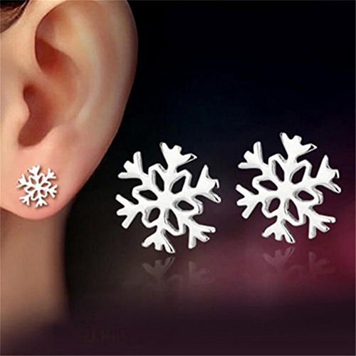 HOUSWEETY Sterling Fashion Snowflake Earrings