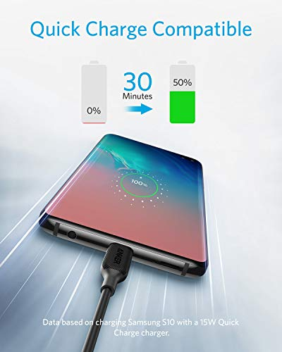 USB Type C Cable, Anker Powerline III USB-A to USB-C Fast Charging Cord (10 ft), Compatible with Samsung Galaxy S10 S9 Plus S8 Plus, LG V20 G7 G6 G5, Sony XZ, and More