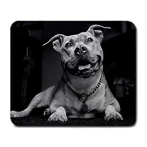 Pitbull Pit bull Large Mousepad Mouse Pad Great Gift Idea