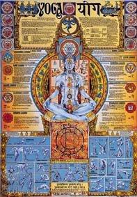 Amazon.com: Yoga Chakra Poster Laminated: Prints: Posters ...
