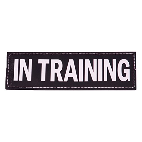 ezydog-side-patch-for-convert-harness-in-training-large