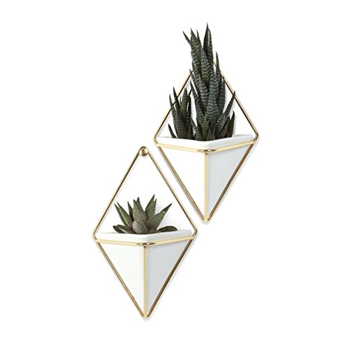 Set of 2 White Ceramic and Brass Succulent Planters