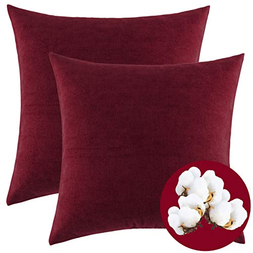 ow Pillow Covers, 2 Pack Polyester Cushion Cover, Original Design Soft Velvet Throw Pillow Case, Best Decorative Pillow Covers for Sofa Couch BedHome Decor (18x18 inches) ()