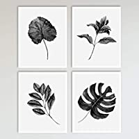 Tropical Leaves Botanicals Wall Decor Art Prints, 4 Piece Set, Black and White Boho Leaf Print 8 x 10 inches each, Unframed