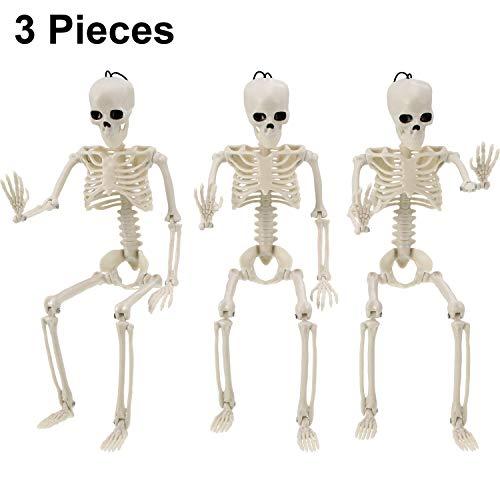 Outus 3 Pieces Halloween Skeleton Full Body Skeleton Model Plastic Skeleton Figure Movable Joints Skeleton for Halloween Decoration