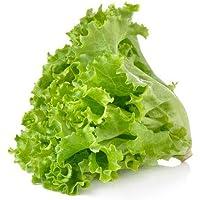 Fresh Produce Lettuce Green Romaine, 100gms