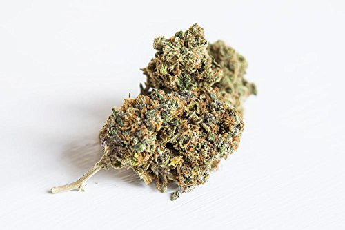 Gifts Delight Laminated 36x24 inches Poster: Weed Ganga Marijuana Cannabis Nug Spliff Chronic Medicine Bud A Grade Isolated White Cured Homegrown (Cbd Flower)