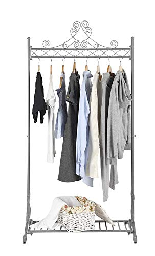 - NEUN WELTEN Chic Garment Rack Metal Hanging Clothes Clothing Racks Hanger Stand with Bottom Shelf for Shoes (Grey)