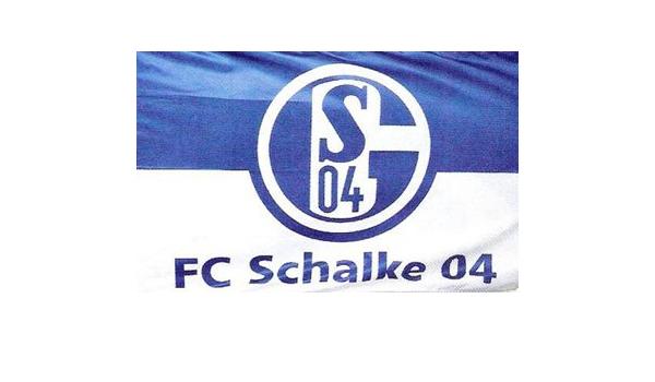 Amazon Com Schalke 04 3 X 5 Polyester Flag Outdoor Flags Garden Outdoor