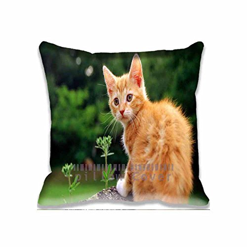cotton-polyester-home-decorative-accent-throw-pillow-cover-orange-cat-cushion-case-pillow-sham-for-s