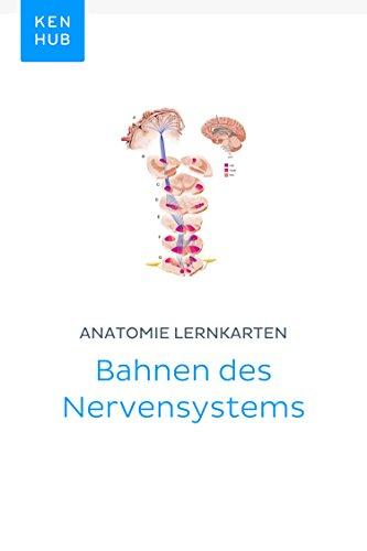 Anatomie Lernkarten: Bahnen des Nervensystems: Lerne alle Nerven ...