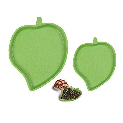 - sxbest 2 Pack Pet Aquarium Leaf Reptile Food and Water Bowl Terrarium Dish Plate Supplies Lizards Tortoises or Small Reptiles