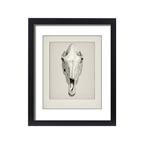 Media Storehouse Framed 20x16 Print of Camel Skull Etching (15217976)