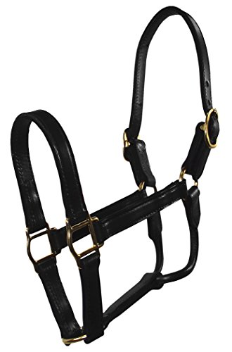 Hamilton 1-Inch Leather Deluxe Halter, Yearling Size, Fits 300 to 500-Pound, Black