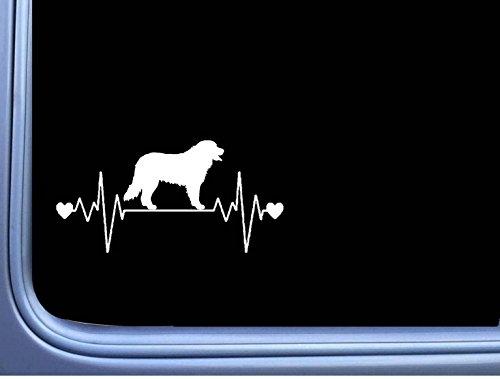 Bernese Mountain Dog Lifeline L378 8 inch Decal Sticker (Dog Bernese Mountain Car)