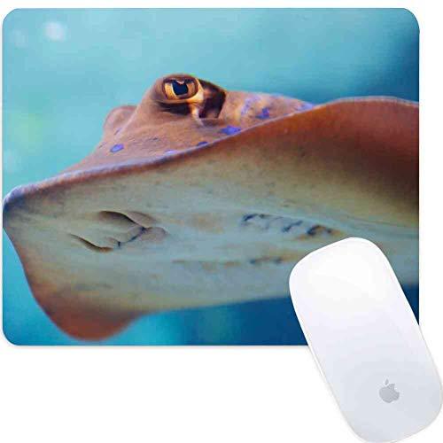Mouse Pad Rectangle Mouse Pad Animal Aqua Aquarium Colorful Diving Fish Marine #21917 Sturdy 800mm300mm3mm