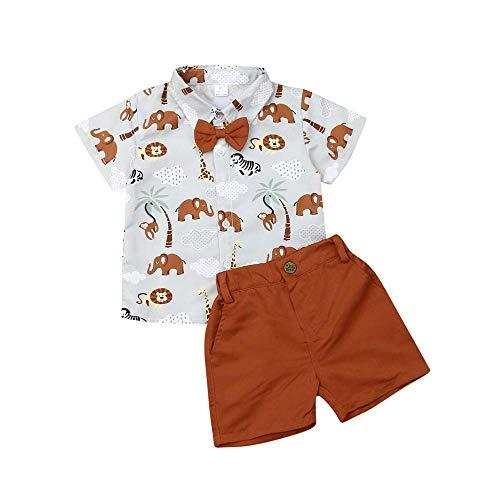 Boy Flamingo Short Sleeve Button Down Shirt & Pink Shorts Pants Kids Summer Outfits 1-6 T Clothes Set (Cyan&Brown, 2-3T) ()