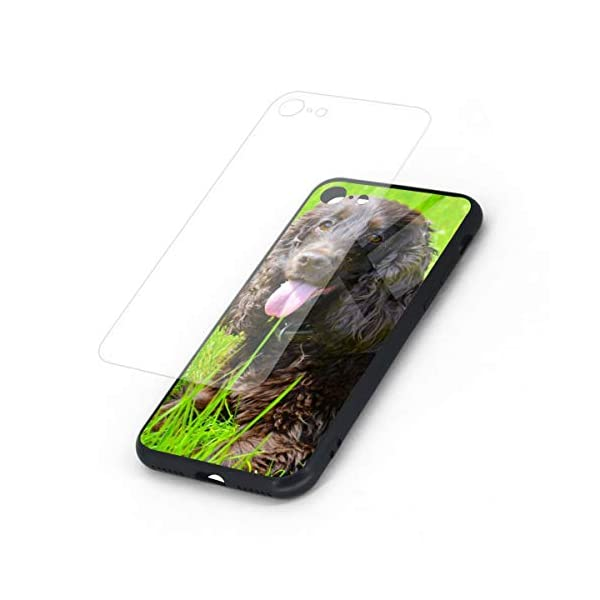 Irish Water Spaniel iPhone 7 /iPhone 8 Compatible Tempered Glass Phone Case Fashion Hard Glass Back Cover 2