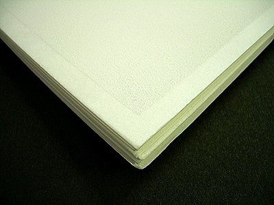 Richesons Premium Pastel Surface- White 140lb Paper Pack of Ten 24x36 Inch Sheets by JRC