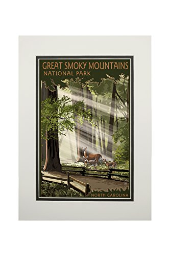 Great Smoky Mountains, North Carolina - Deer and Fawn (11x14 Double-Matted Art Print, Wall Decor Ready to Frame)