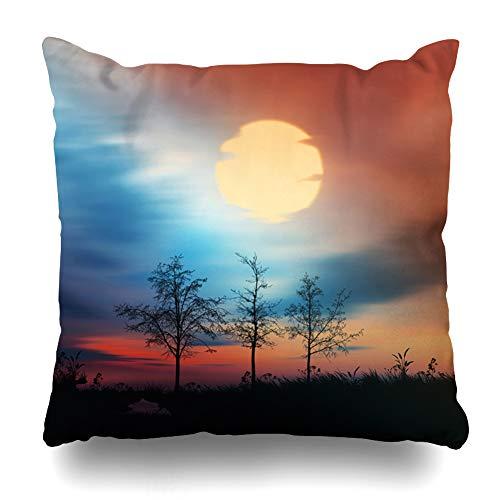 Ahawoso Throw Pillow Cover Pillowcase Horizon Red Abstract Above Nature Light Asia Birds Black Bright Calm Design River Home Decor Design Square Size 20