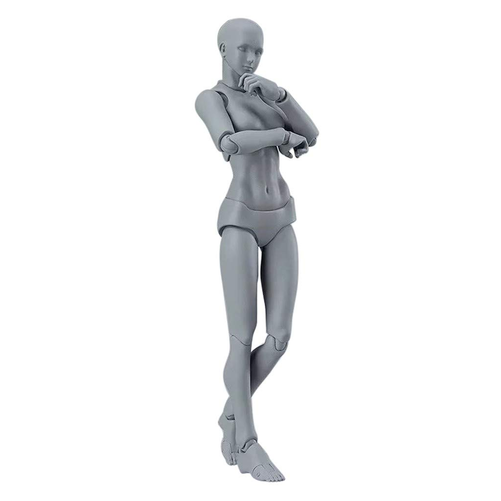Artists Action Figure Model Human Mannequin Man//Woman Action Drawing Figure Equitment with Accessories Kit Suitable for Sketching Artist Drawing Kids Painting Multicolor