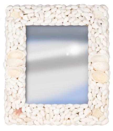 - Terragrafics Palm Springs Wall Mounted Shell Mirror, 18 by 24-Inch, White
