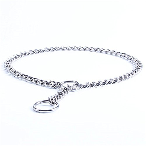 JWPC Stainless Steel P Chock Metal Chain Training Dog Pet Collars Necklace Walking Training Pet Supplies for Small Medium Large Dogs,L by JWPC