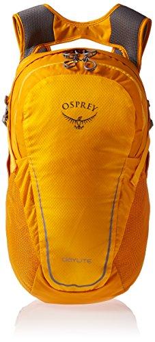 Porter Backpack - 9
