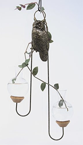 Brass Butterfly Hanging (Brass Butterfly The Hanging Owl Double Plant Rooter)
