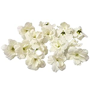 Cherry Blossom Flower Heads, 100pcs Colorfulife Artificial Silk Flower Head Petals Bridal Shower Favors for Wedding Party Supplies Table Floor Decoration Centerpieces Home Decorative (White) 28