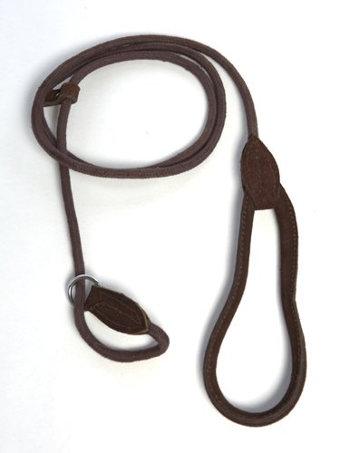 Aussie Dog Slip Lead, My Pet Supplies