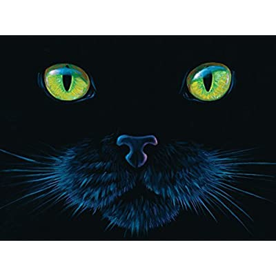 Black Cat A 1000 Piece Jigsaw Puzzle By Sunsout By Sunsout
