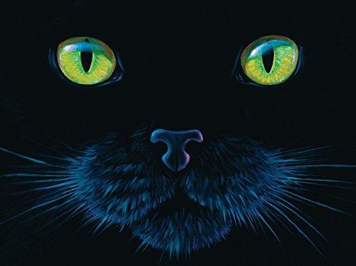 Black Cat A 1000 Piece Jigsaw Puzzle By Sunsout By Sunsout